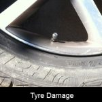 Be insured if your best friend likes your tyres even more!!