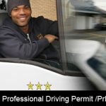 What are the procedures to apply for a Professional Driving Permit?