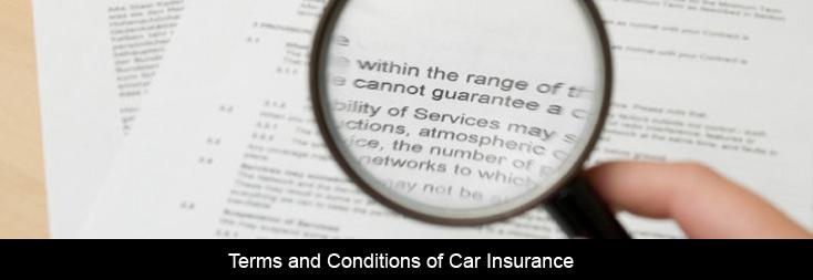 insurance company auto insurance terms