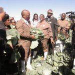 Mandela Day: Prisoners sew school uniforms and harvested fresh vegetables