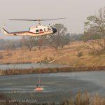 Nature photographer captures battle against veld fires near White River on camera