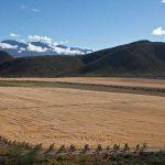 Bridge Cape Pioneer Trek mountain bike race promises fierce men's showdown