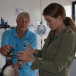 """South African Marine Rehabilitation and Education Centre wishes to """"go green"""""""