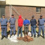 Police arrest 2 suspects for dealing in suspected stolen copper wire at Kimberley