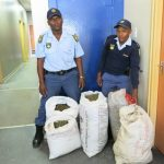 Ngqeleni police station members praised for sterling work in making arrests to curb drug dealing