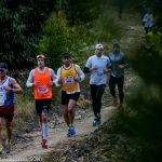 Momentum Cape Times Knysna Forest Marathon Results Released