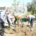 Toyota committed to greening properties for Arbor Day