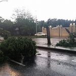 Alexander Forbes offer tips on Protecting your property in stormy weather conditions