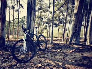 Mountain bike Jaco Lups