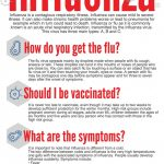 What do I need to know about flu season and safety from influenza?