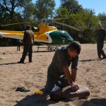First aid course for rangers on World Rhino Day