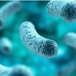 What is Legionnaires' disease and what are the implications of this for risk management and insurers?