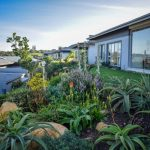 Reasons why your home could do with an indigenous garden