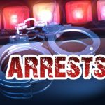 Eight arrested for obstructing police officers at Wentworth