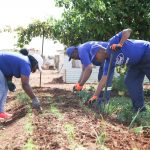 Ford Volunteers Change Lives during 2019 Global Caring Month