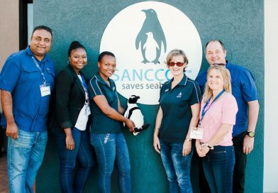 Ford Partners with SANCCOB to Save the Endangered African Penguin